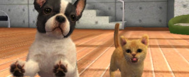 nintendogs-and-cats-3ds-gameplay-screenshot